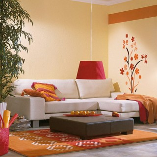 Elegant Living room wall decoration