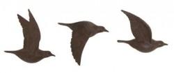 Illusion of flying bird