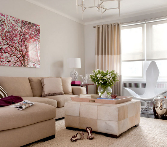 Neutral Living room wall decoration