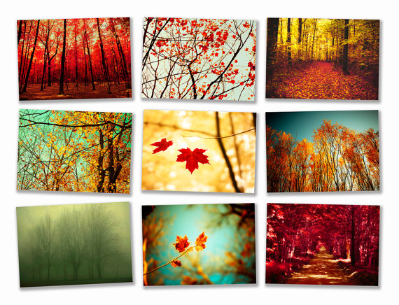 Autumn Photography Wall Decor Wall Decoration Pictures