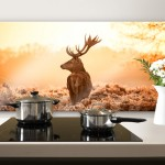 Majestic Deer – Panorama – Kitchen Splashback